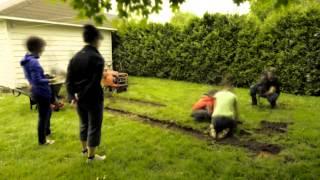 Un jardin potager à Québec - dujardindansmavie.com