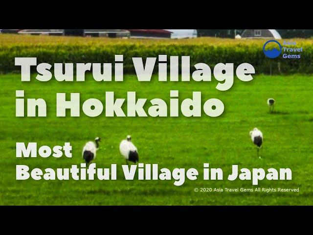Most Beautiful Village in Japan - Tsurui Village in Hokkaido