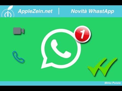 WhatsApp prepara un GROSSO aggiornamento presto IN ARRIVO