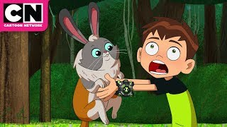 Ben 10 | Ben And Cadobbit | Cartoon Network