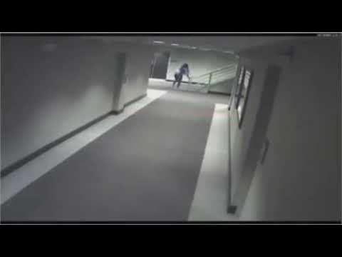 Surveillance Video Of Kenneka Jenkins Walking Into The Freezer