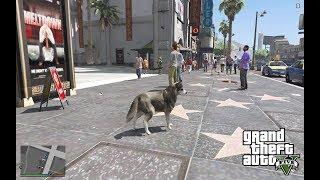 GTA 5 Mods: Как играть за животных в GTA 5. Играем за животных в ГТА 5