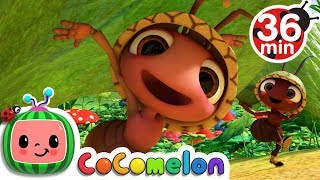 Download lagu Ants Go Marching + More Nursery Rhymes & Kids Songs - CoComelon