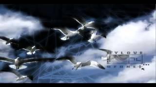 [ SpaceCats ] Химическая Зависимость : qağayılar və cadu : : UFONET © TEC.