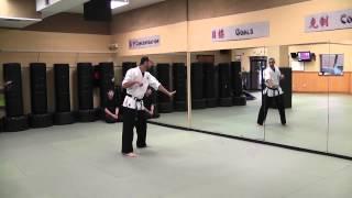 Kenpo Six - technique 3
