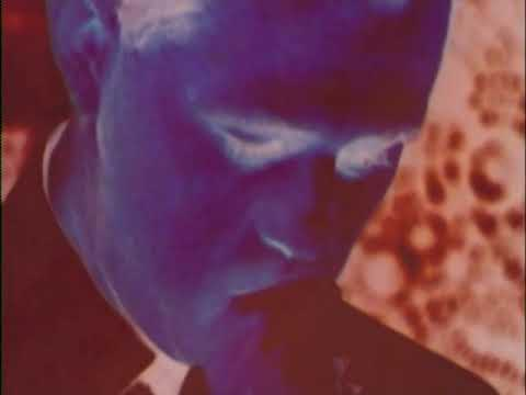 Medeski, Martin, & Wood - The Dropper (Official Music Video) mp3