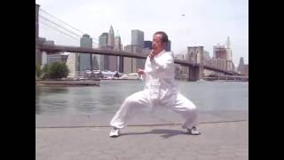 Chen Style Tai Chi Old First Form|陈氏太极老架一路