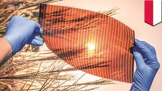 Inkjet printed solar cells set to revolutionize green energy - TomoNews