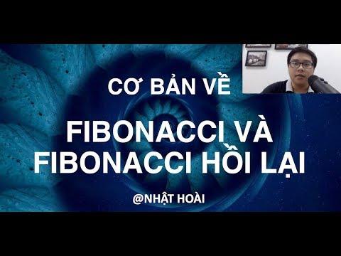 Học Fibonacci | Cơ Bản Về Fibonacci Và Fibonacci Hồi Lại