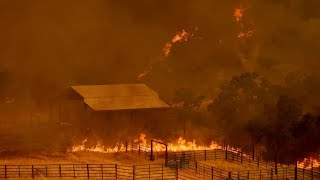 Flammenmeer: Tobende Waldbrände in Kalifornien