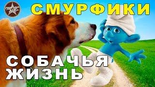 Собачья Жизнь / Смурфики обзор фильма и мультфильма