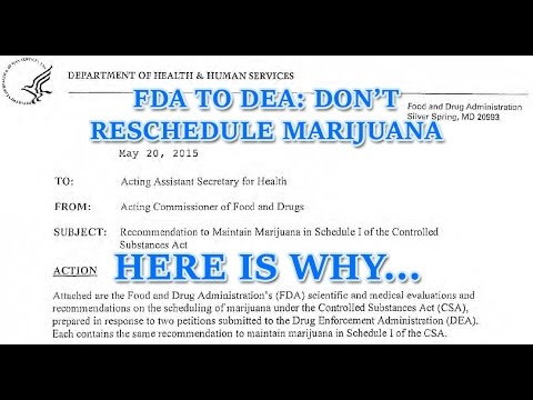 FDA's ACTUAL Recommendation to the DEA on Rescheduling Marijuana
