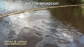 Kalamazoo River Oil Spill (Enbridge) July 2010
