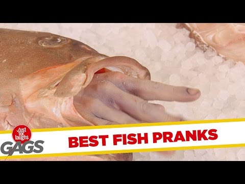 Versteckte Kamera - Best Fish Pranks