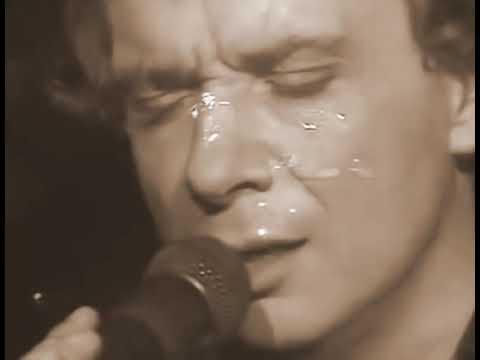 Michel Sardou Concert 85 Je Viens Du Sud