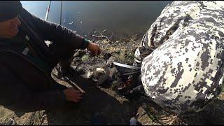 СИДЕЛИ РЫБАЧИЛИ ПРИШЁЛ МЕСТНЫЙ И ЗАБРАЛ ВСЕХ КАРАСЕЙ рыбалка на поплавок ловля линя и карася