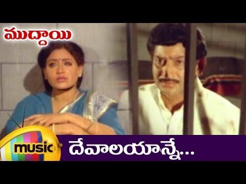 Devalayanne Full Video Song   Muddayi Telugu Movie Video Songs   Krishna   Vijayashanti   Sharada