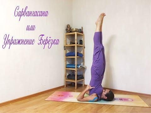 YogaFAQ#34 Сарвангасана или упражнение Березка