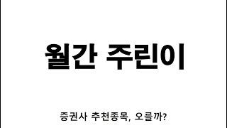 월간 주린이 _ 증권사 추천 종목, 오를까?
