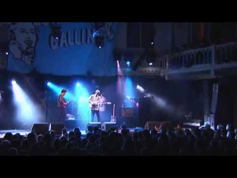 bombay bicycle club live @ london calling 2008