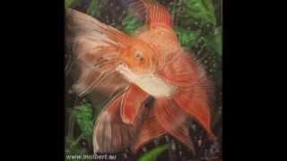 Как нарисовать Золотую Рыбку c Еленой Литвиненко.(Урок рисования с Еленой Литвиненко.Как нарисовать золотую рыбку. Рисование рыбки акриловыми красками.Поша..., 2014-03-06T18:30:03.000Z)