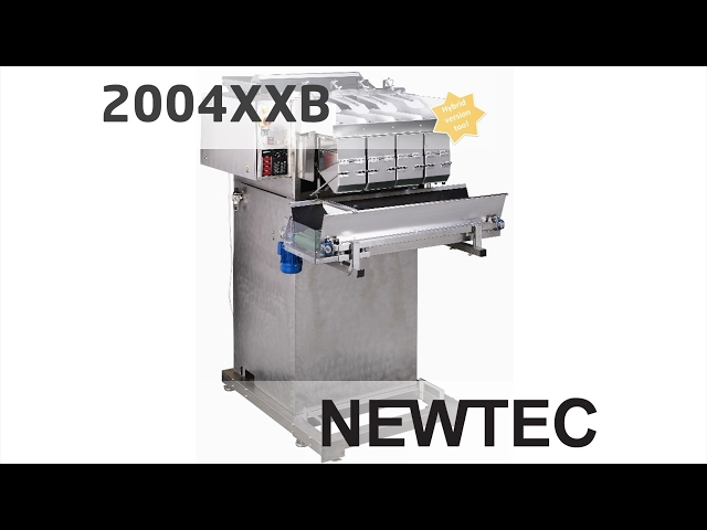 Newtec Weighing Machine, model 2004XXB