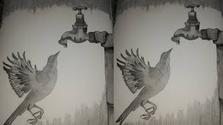 Beautiful Sketch of Bird made with graphite 2H and 8B || K for Kaiynat