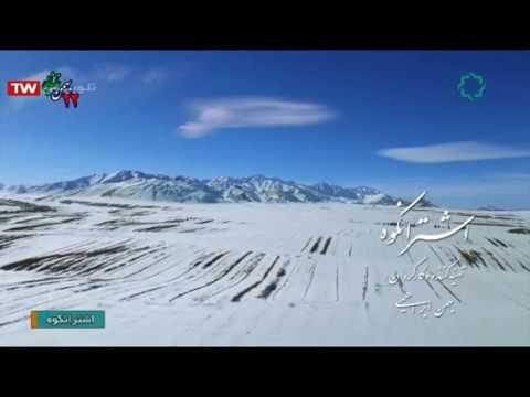 Iran Oshtoran-Kuh montain wild animals & nature, Lorestan طبيعت و حيوانات وحشي اشترانكوه لرستان