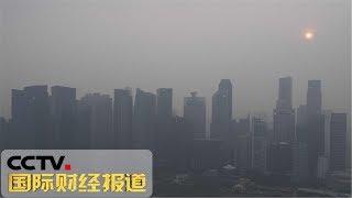 [国际财经报道] 东南亚烟霾污染影响多个领域 损失尚难确定 | CCTV财经