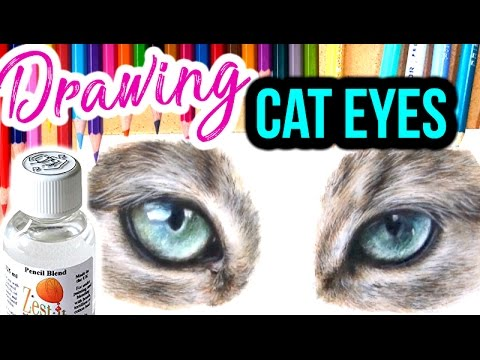 How To Draw Realistic Cat Eyes Step By Step Coloured