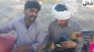 Air_port_da_Kukur_Motor_Way_By_Shughal_Mela_Tv_Funny_Videos_2019|funny clips