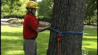 installing an eye sling in a rigging block and attaching to a tree