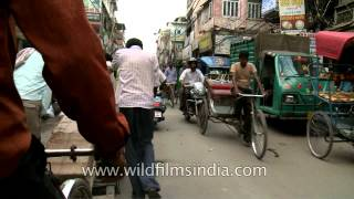 Cycle rickshaw ride through Chandni Chowk, Delhi