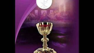 Majestosa Eucaristia - Anjos de Resgate