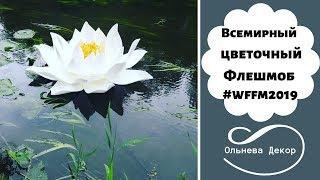 Всемирный цветочный Флешмоб #wffm2019. Организатор - основатель Студии Больших цветов  Ольга Ольнева