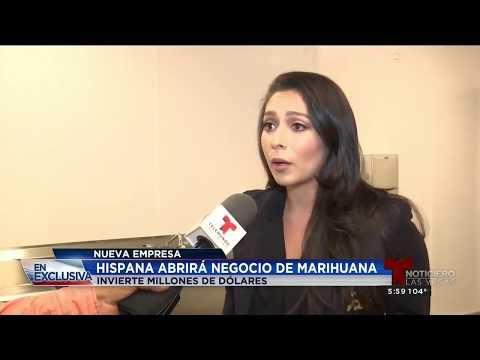 Telemundo Las Vegas Interviews Premium Produce CEO About Nevada Cannabis Business