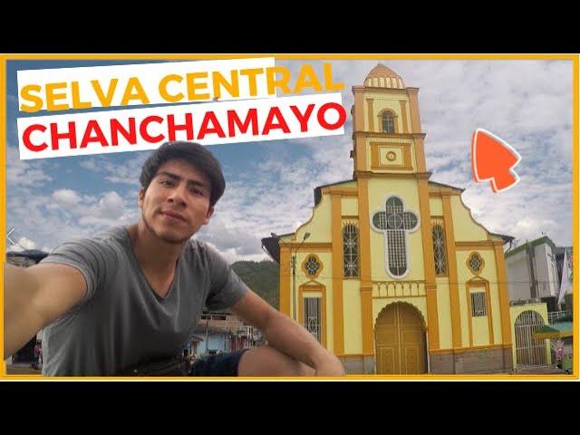 🌳Vamos a la SELVA CENTRAL‼️ 🦋 | Ruta por La Merced - CHANCHAMAYO.🐾