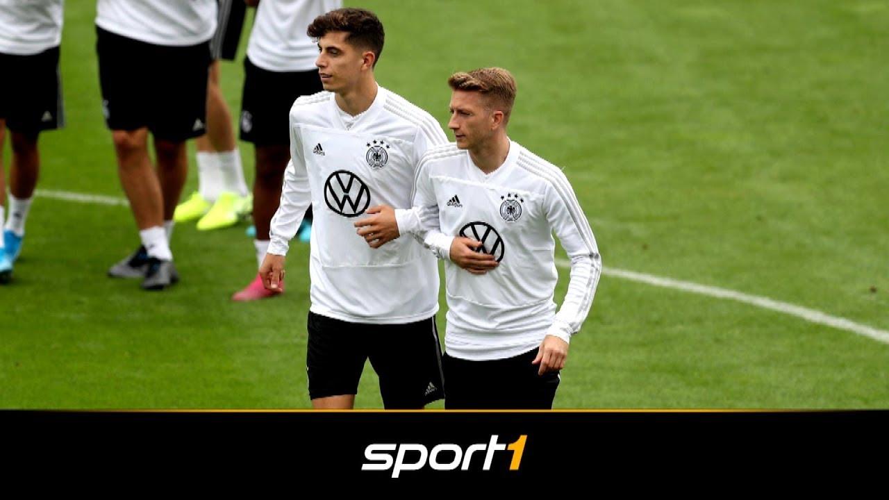 Marco Reus will Kai Havertz zum BVB locken | SPORT1 - TRANSFERMARKT