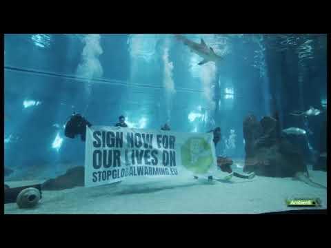 Acquario di Genova e lo StopGlobalWarming di squali, pinguini, pesci e coralli