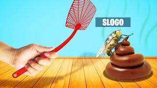 SLAP SLOGO EATING POOP! (Slap The Fly)