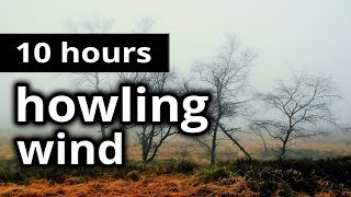 """WIND SOUNDS: """"Howling Wind"""" - 10 HOURS - A whistling wind outside on the bleak moors - SLEEP SOUNDS"""