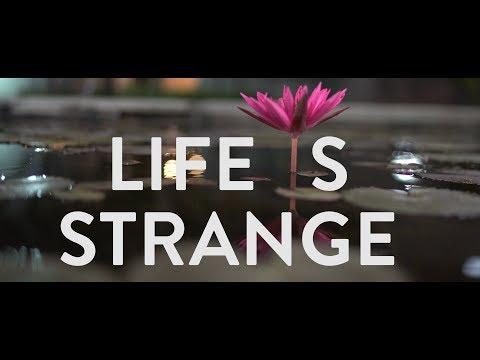 IIM Ahmedabad - Life Is Strange