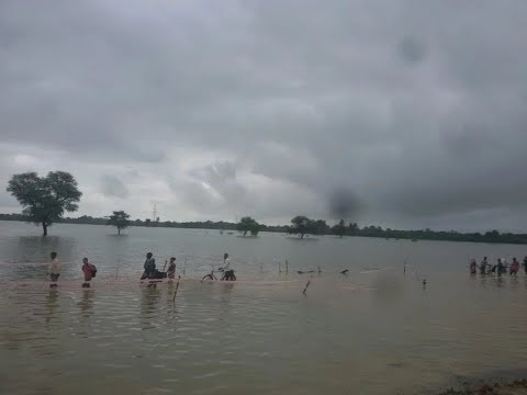 Flood In SiddharthNagar- सिद्धार्थनगर में बाढ़ ।