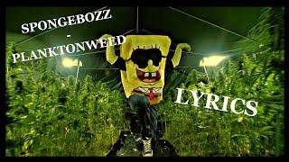 SPONGEBOZZ - PLANKTONWEED | LYRICS