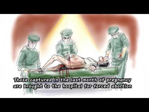 North Korea Political Prison Camp 8;30 (www.ecornerstone.org)