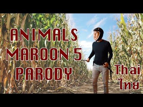 Animals Maroon 5   สัตว์ป่า Thai Cover / Parody Literal Translation แปลไทย ซับนรก