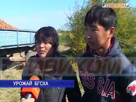 северокурильск город знакомства