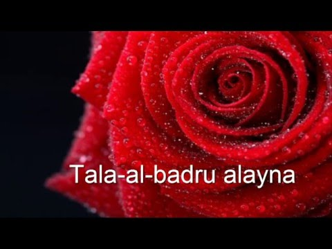 Tala-al-badru alayna Saad and Hadi.Lyrics by Haiqa ILYAS