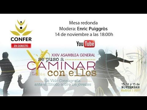 XXIV Asamblea General CONFER 2017. Mesa redonda. Enric Puiggròs