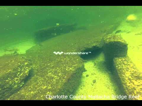Matlacha Bridge Reef Project underwater video